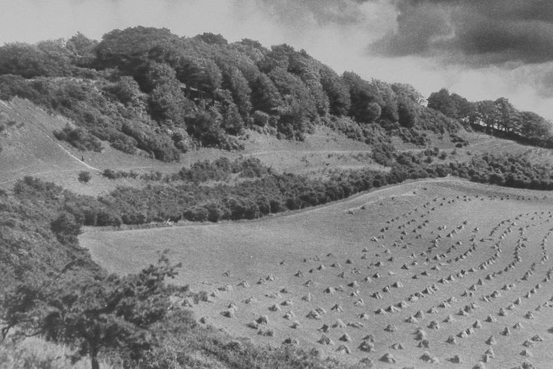 White Hill Tupwood Near Caterham 1920s