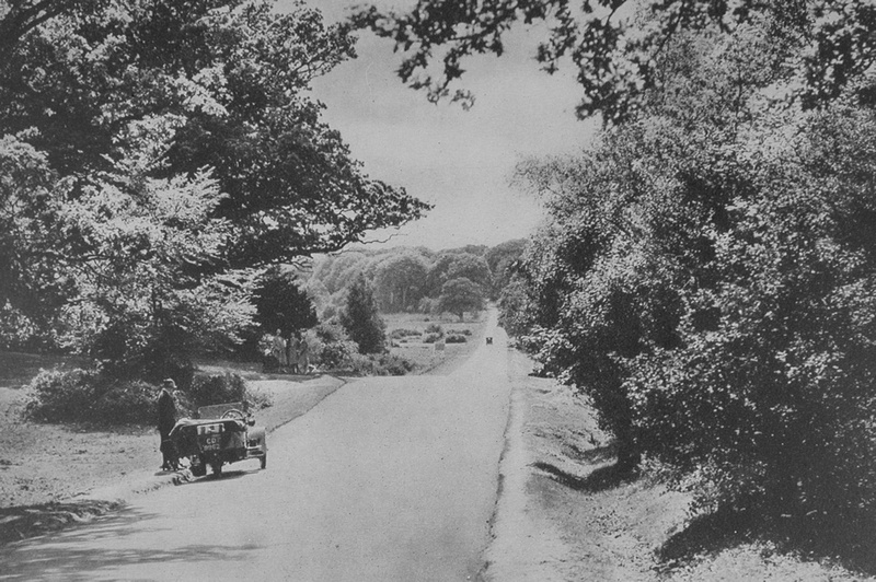 The Bournemouth Road Through The New Forest Near Lyndhurst 1920s