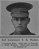 Walker T R 2nd Lt 18th The King's (Liverpool Regiment) The Sphere 7th Oct 1916