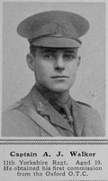 Walker A J Captain 11th Yorkshire Regt The Sphere 11th Sep 1915