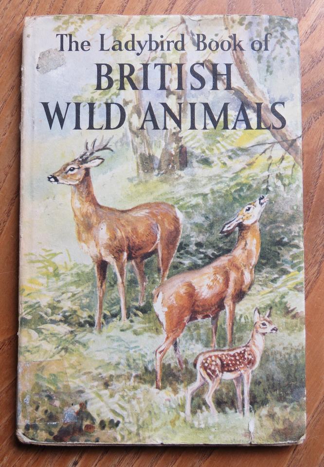 Ladybird Book Of British Wild Animals