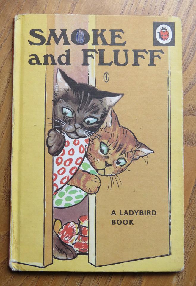 Ladybird Book Smoke And Fluff