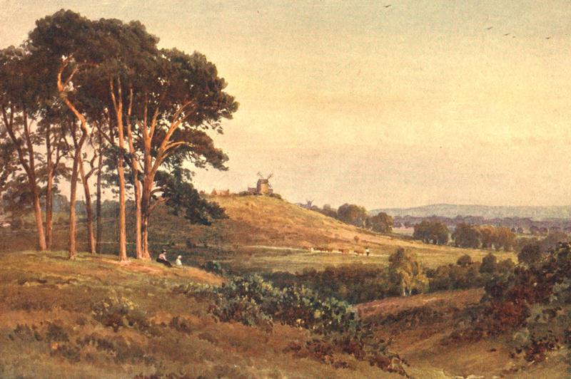 An Evening Reigate Heath 1906