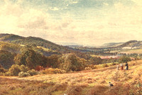 The Vale Of Dorking 1906