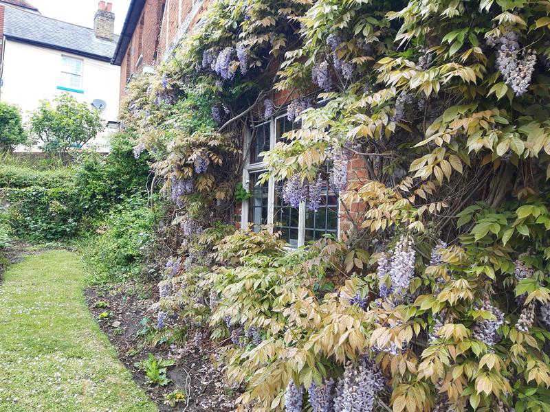 Sweech House Gravel Hill Leatherhead
