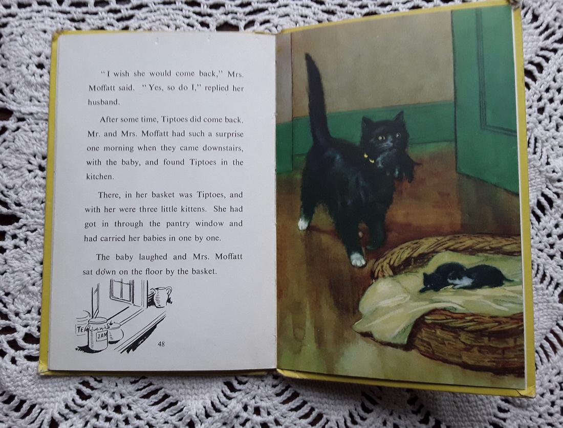Tiptoes The Mischevious Kitten