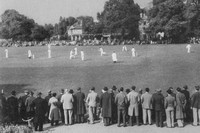Playing Cricket At Mitcham