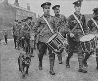 The Regimental Mascot Of The 2/6th West Riding Regiment Completing A 300 Mile Recruitment March
