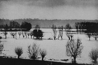 Floods At The River Stour Near Flatford 1930s
