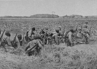 Indian Infantry Advancing Across A Field