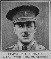 Aspinal R L Lt Col DSO 11th Cheshire Regiment The Great War Vol 8