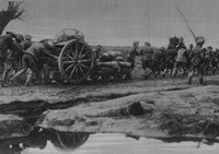 An Australian Artillery Wagon On Its Way To The Front
