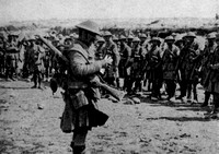 The Roll Call Of The Seaforth Highlanders At White City Beaumont Hamel 1st July 1916