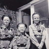 Brownies In The 1960s