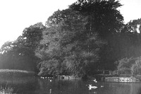 The Duck Pond At Fallodon Northumberland 1940s