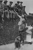 An Australian Soldier Selling Roses To Wounded Soldiers On Alexandra Rose Day