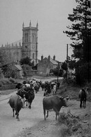 Kings Norton Church Leicestershire 1940s