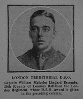 Escombe W M L Captain DSO 20th London Regiment The Graphic 26th July 1915